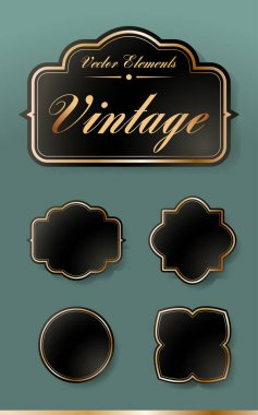 Set of High Quality Vintage Labels on Transparent Background . Vector Isolated Illustration icon