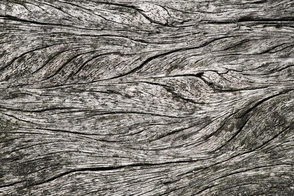 Legno Bianco E Nero : Immagine in bianco e nero della tavola in legno rustico con vasi