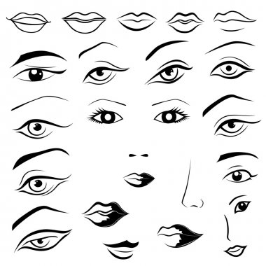 Human eyes, lips, eyebrows and noses