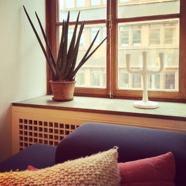 Window decorated with Sansevieria plant and candleholder