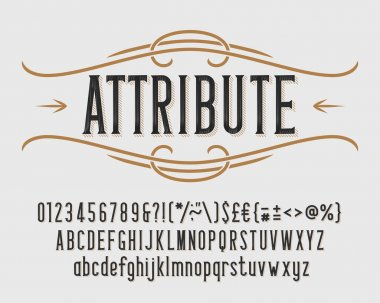Attribute alphabet font. Vintage letters, numbers and punctuations for label, badge or emblem design. Stock vector typeface for your typography design.