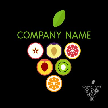 Fruits logo template (concept). Vector illustration.