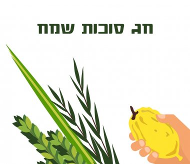 Jewish holiday Sukkot. torah with Lulav, ,Etrog, Arava and Hadas. Four species symbols date palm, citron, willow, myrtle.