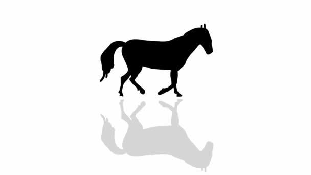 Chůze koně (bezešvé smyčka animace)