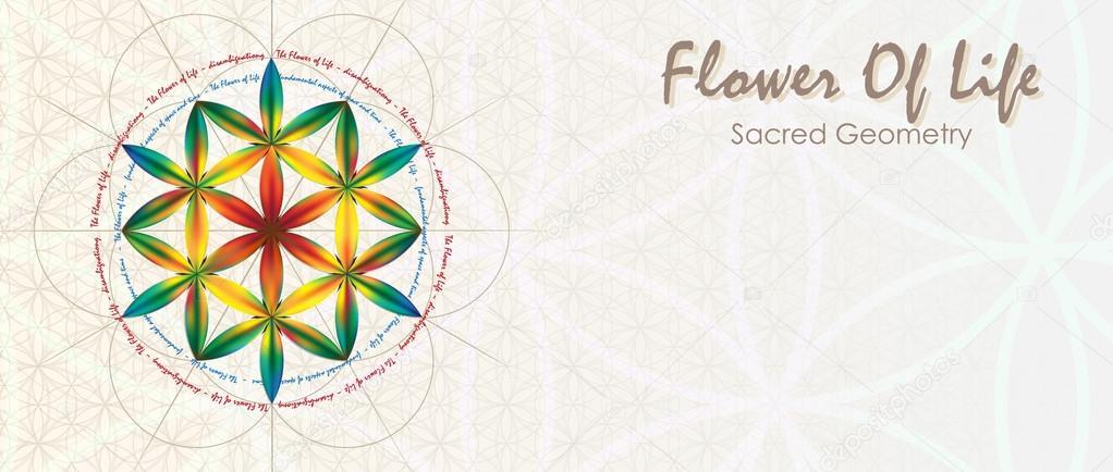 Flower Of Life Banner Stock Vector Sergey7777 68709899