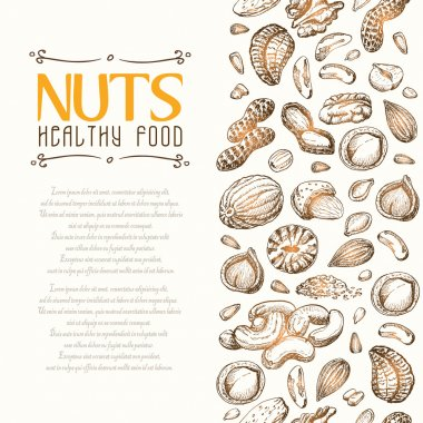 Vector background with nuts arranged vertically