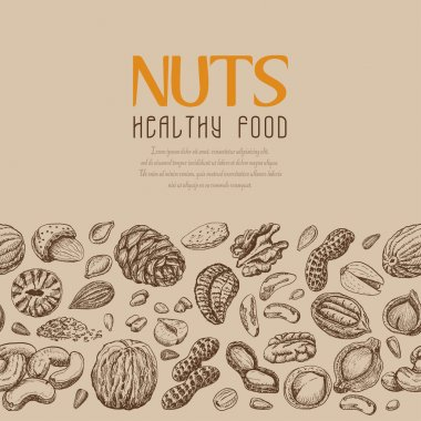 Vector background with nuts arranged horizontally