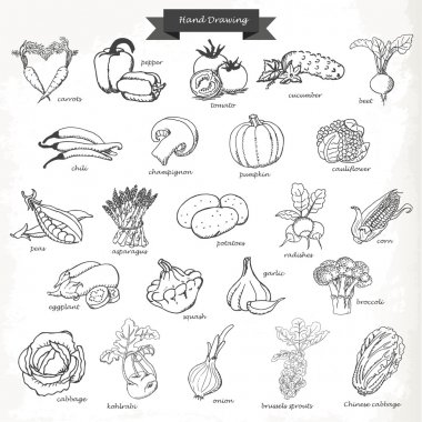 Set of vegetables. Vector hand drawing sketch illustration