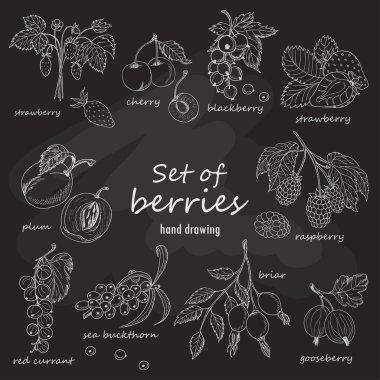 Set of garden berries on dark background