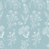 Seamless pattern with herbs on blue background