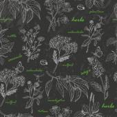 Fotografie Vector seamless pattern with herbs on a dark background