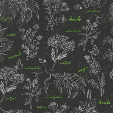 Vector seamless pattern with herbs on a dark background clip art vector