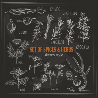 Set of Herbs and spices in sketch style on dark background. Vector illustration for your design clip art vector