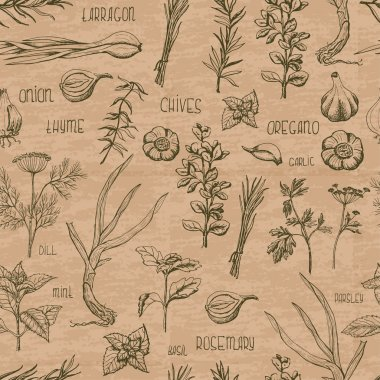 Seamless pattern with herbs and spices on a beige background