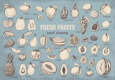 Big collection of fruits on blue background