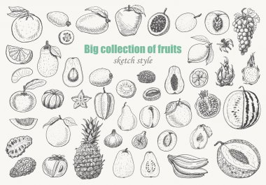 Big collection of fruits on white background