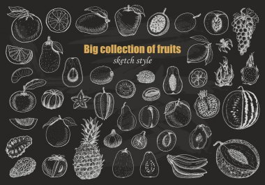 Big collection of fruits on dark background