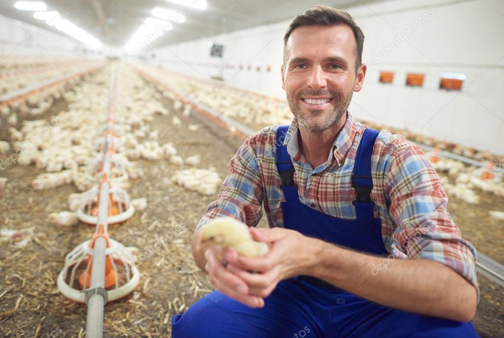 бывает малый бизнес хозяйств птицы фермер фото или иную