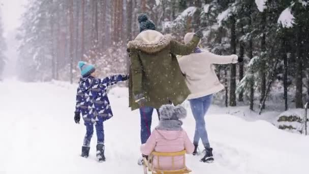 Rückansicht des Familienspaziergangs im Winterwald. Aufnahme mit roter Heliumkamera in 8K.