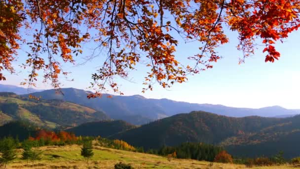 Zlaté listy a Panorama hor
