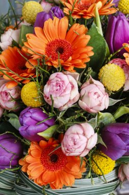 Bouquet of orange gerbera daisies, violet tulips and pink roses