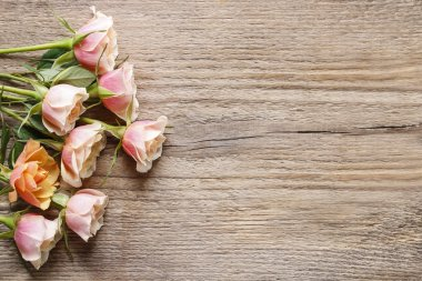 Pastel pink roses on wooden background