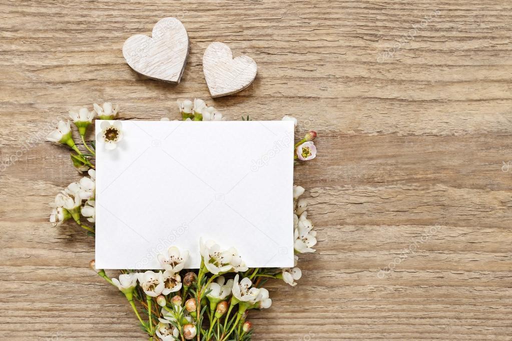 Blank card among chamelaucium flowers (waxflower)