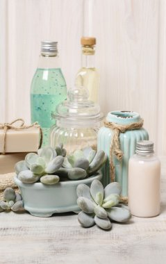 Moisturizing dry skin: set of cosmetics and succulent plants