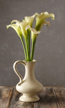 Bouquet of white calla flowers (Zantedeschia)