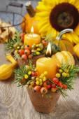 Fotografie schöne Tischdekoration mit Kerze und Herbstpflanzen