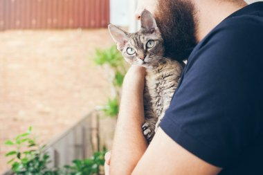 A man with a beard is hugging with his lovely devon rex cat