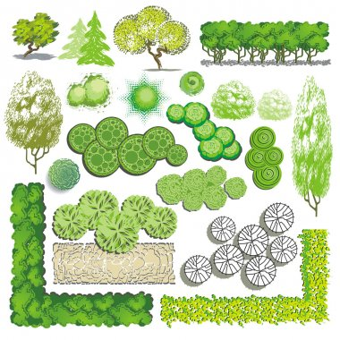 Trees and bush item for landscape design, vector icon