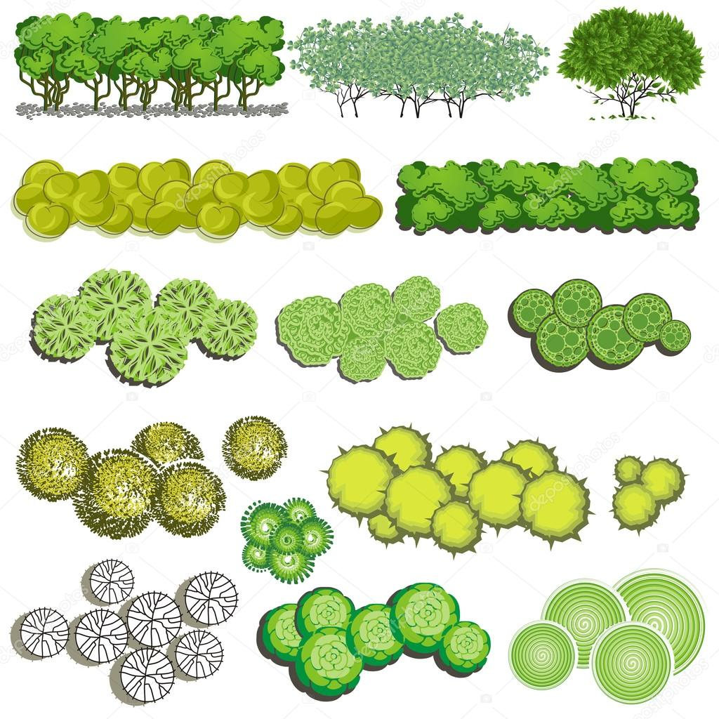 Landscape Design Bush Icons Trees And Bush Item Top View For