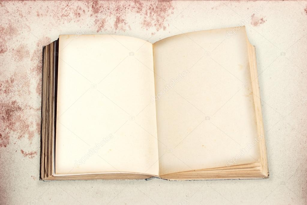 Opened Old Book With Mold Made Paper And Empty Pages On Stained Vintage Background Photo By SusaZoom