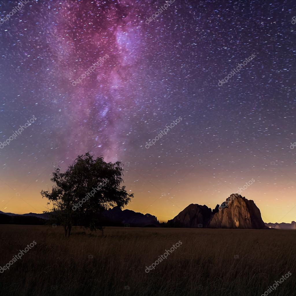 Lonely tree and milky way