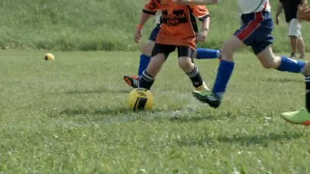 děti fotbal