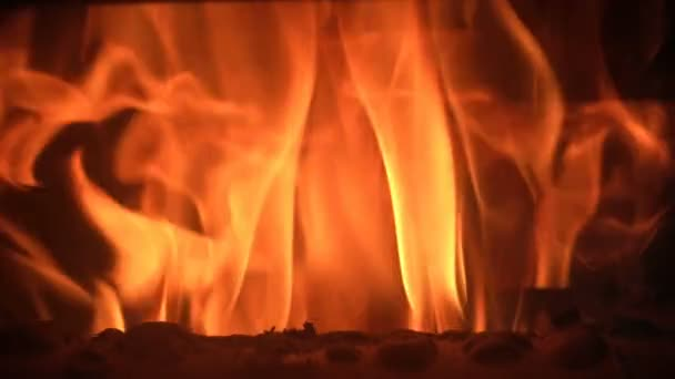 plamen ohně closeup