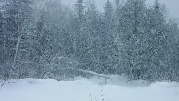Blizzard s obrovské množství sněhu