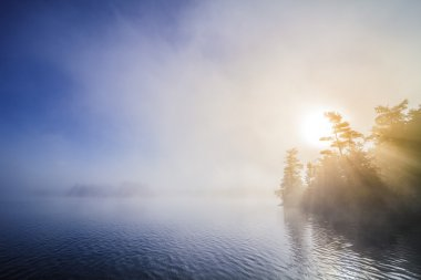 Calm Foggy Lake in the Morning