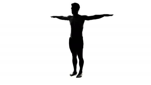 Full Length Spinning Naked Man Silhouette