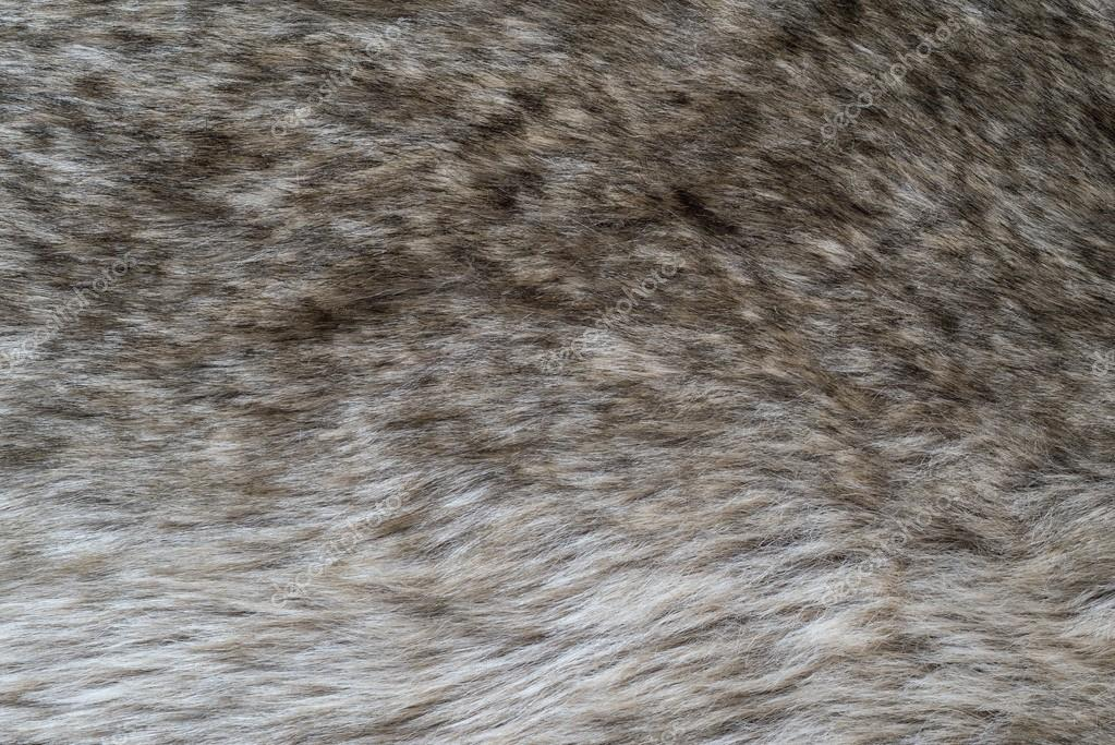 shaggy abstract texture of wolf fur