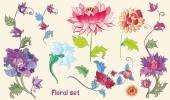 Blumen Vektor Set mit Lotusblüten und Pfingstrosen. Asiatisches Thema