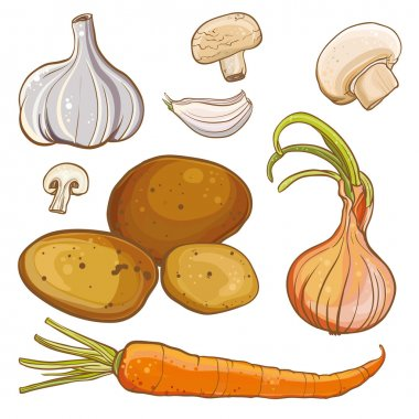 Vector set with onion, carrot, potatoes, garlic, mushrooms