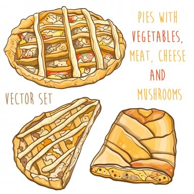 Vector set with pies with vegetables, meat, cheese and mushrooms