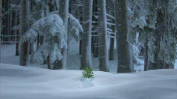 Veselé Vánoce 3d animace