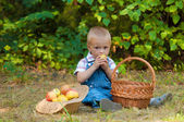 Little boy with a basket of apples in the  park