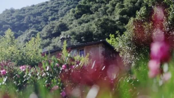 Staré středomořské domek se zahradou