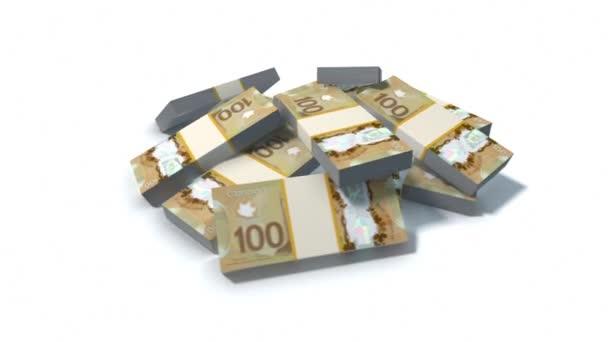 Zásobník z kanadských dolarů