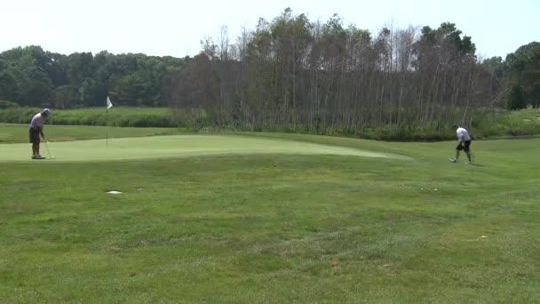 Kiefernplantagen-Golfplatz (2 von 2))