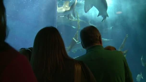 Lidé požívající velké akvárium